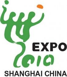 EXPO 2010 – czas na dziecko?